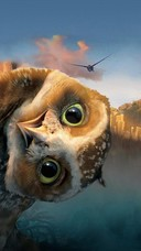 Preview funny owl wallpaper 10531182